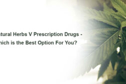 Natural Herbs Vs Prescription Drugs